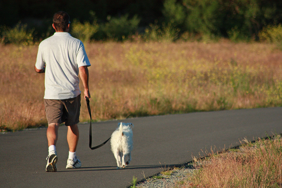 Your dog will enjoy the benefits of learning to walk on a loose leash! Best Paw Forward