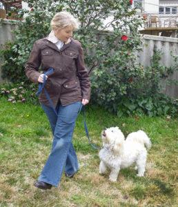 Ingrid and Pepin - Best Paw Forward Bathurst.